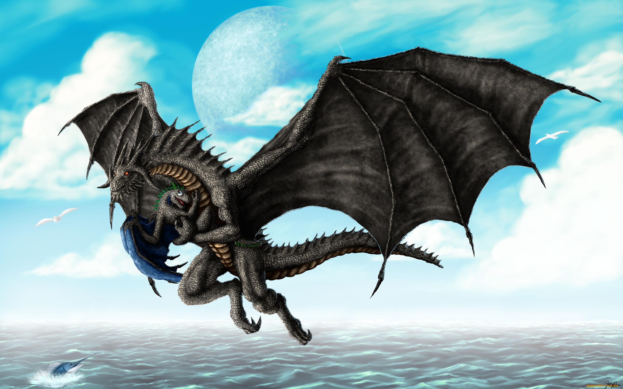 картинки крылья драконов